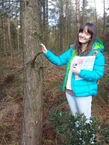 Tree identifying