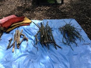 Piles of dry sticks