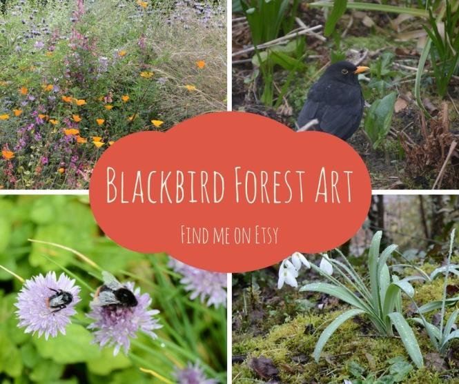 blackbird-forest-art-2
